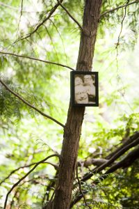 Allen Ginsburg photo on a tree