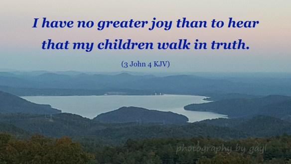 no-greater-joyid