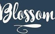 Blossom Restaurant Seville