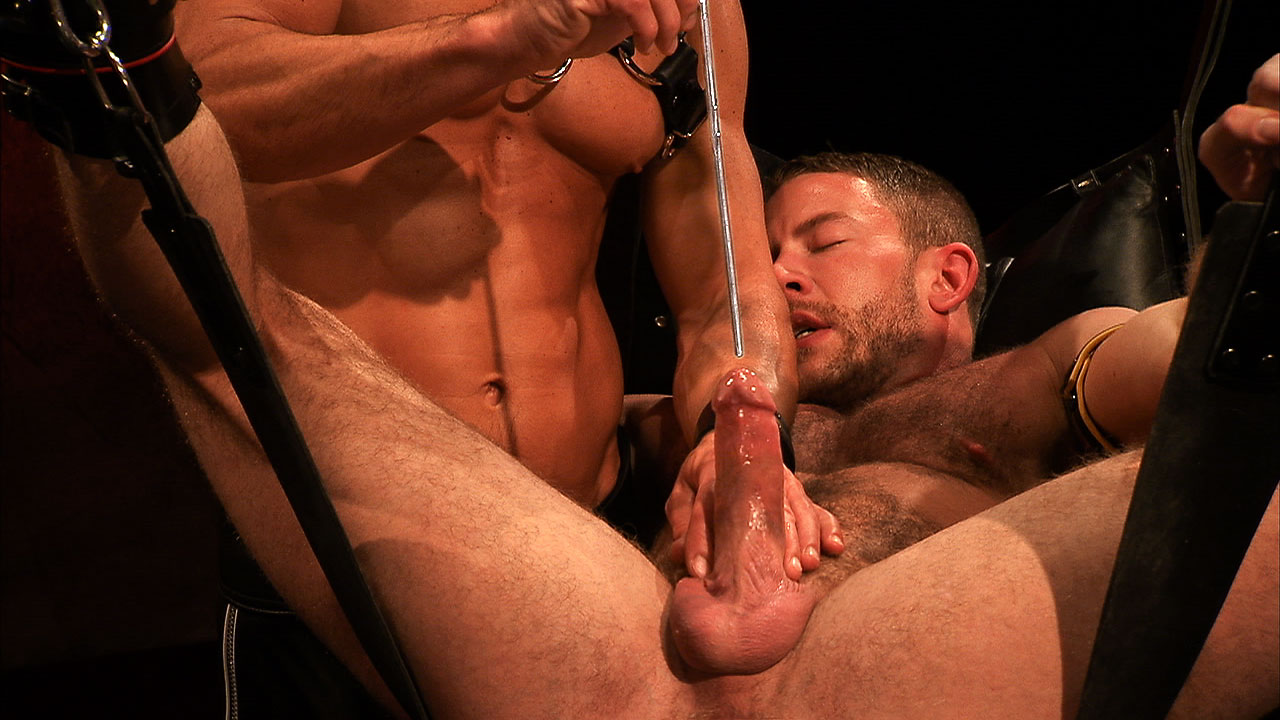 gay male forced cock milking