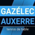 gazelec-carre