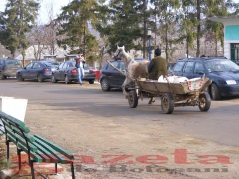 protest- drum- judetean-gropi-nicseni-roma-casa-fisuri-tinaj-rural-sate-drumuri-masini (82)