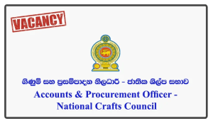 Accounts & Procurement Officer - National Crafts Council