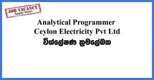 Analytical-Programmer--Ceylon-Electricity-Pvt