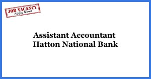 Assistant-Accountant