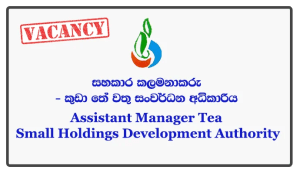 Assistant Manager (HR/Administration) - Tea Small Holdings Development Authority Closing Date: 2018-05-28Assistant Manager (HR/Administration) - Tea Small Holdings Development Authority Closing Date: 2018-05-28