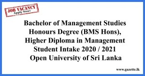 Bachelor-of-Management-Studies