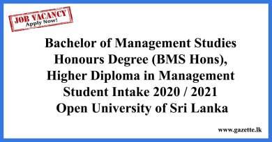 Bachelor-of-Management-Studies