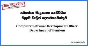 Computer-Software-Development-Officer