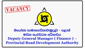 Deputy General Manager ( Finance ) - Provincial Road Development Authority