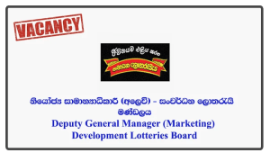 Deputy General Manager (Marketing) - Development Lotteries Board