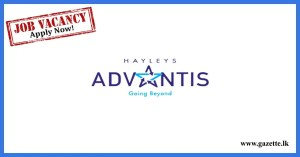 Heyleys-Advatis-Engineering-Vacancies