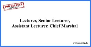 Lecturer,-Senior-Lecturer,-Assistant-Lecturer,-Chief-Marshal