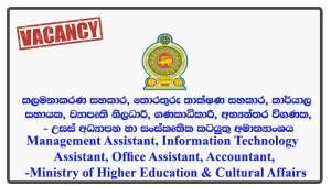 Management Assistant, Information Technology Assistant, Office Assistant, Project Officer, Accountant, Internal Auditor, Project Engineer - Ministry of Higher Education & Cultural Affairs