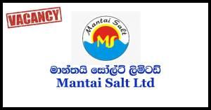 Mantai Salt Limited