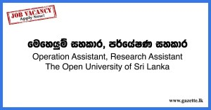 Operation-Assistant,-Research-Assistant