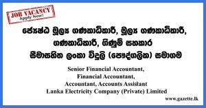 Senior-Financial-Accountant,-Financial-Accountant,-Accountant,-Accounts-Assistant---Lanka-Electricity-Company-(Private)-Limited