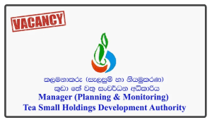 Manager (Planning & Monitoring) - Tea Small Holdings Development Authority