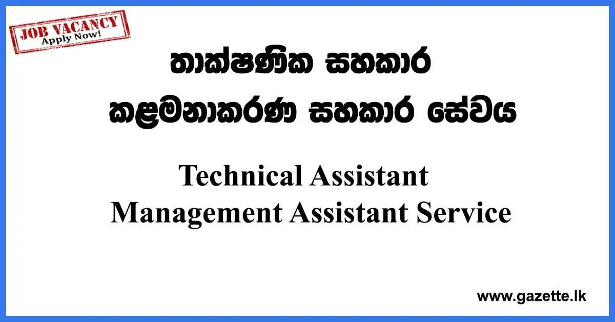 Technical-Assistant