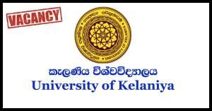 Lecturer, Senior Lecturer - University of Kelaniya