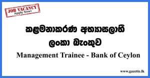 Management Trainee BOC