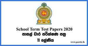 School Term test Papers (2020) Grade 11 - With Answers