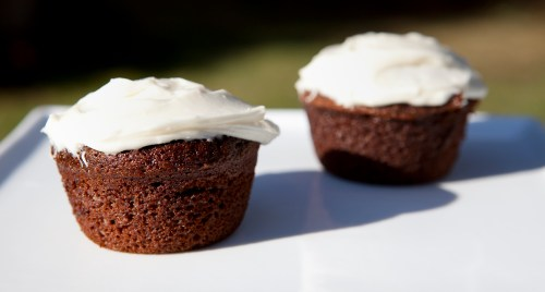 cupcakes-20090826