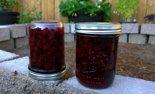 CannedBlackberries