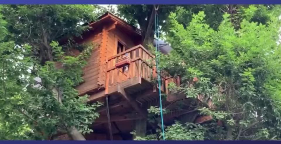 Salviamo la Casa sull'albero di Giordano Nichini: l'appello di Ivan De Grandis