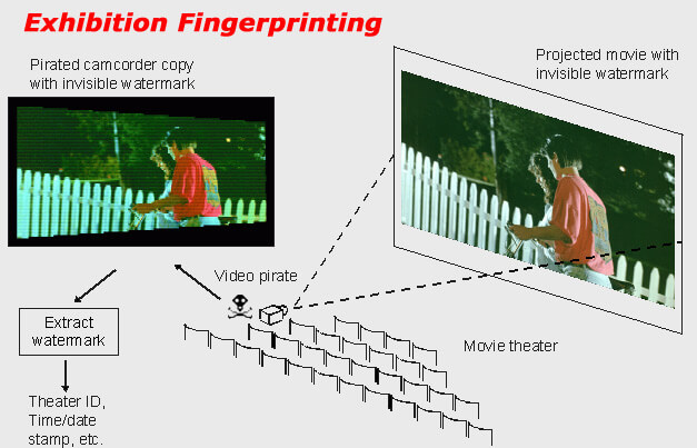 exhibition fingerprinting