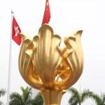 The Golden Bauhinia