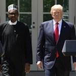 Place travel ban on Donald Trump, Islamic group urges Buhari