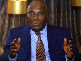Atiku Abubakar under Pressure with Court over citizenship and PDP