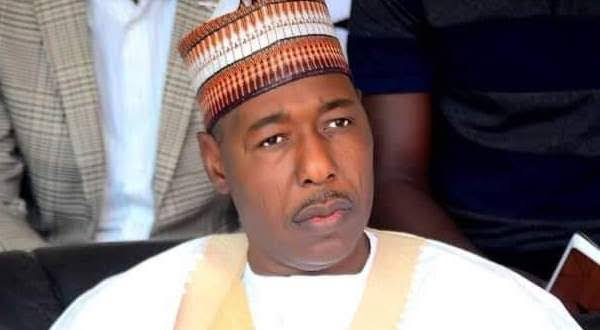 Boko Haram recruited spies with N5,000 - Prof. Babagana Zulum