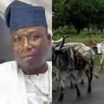 Buhari, IGP, Miyetti Allah seeks the arrest of Sunday Igboho