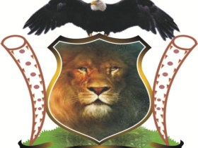 """Igbo Group launches """"Operation Lion Walk"""" in territories"""