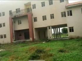 Kogi LGA Officials Turn Abandoned Multi-million Secretariat To Rice Farm