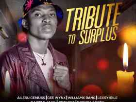 Mapoly All Stars – Tribute To Surplus (Various Artistes)