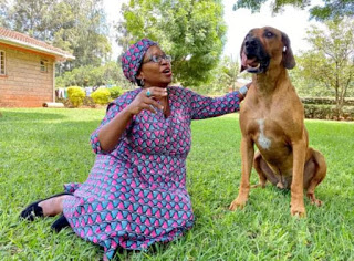 Woman who is tired of loving humans passes affection to her Dog