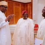 Buhari Wasn't Referring to Tinubu on ARISE News Interview - Presidency