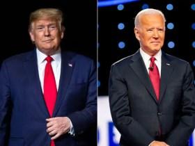 TRUMP VS BIDEN, who is the Next American President?