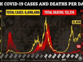 UK Covid deaths rise by almost 50% in a month as 133 more people die and another 32,406 test positive