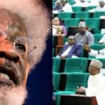 Reps, Soyinka Speaks On Buhari Twitter Ban In Nigeria