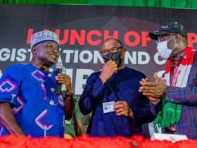Anambra Guber: PDP inaugurates campaign council; Ikpeazu named Chairman