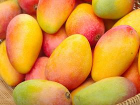 Why you should ensure to eat mangoes this season