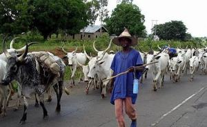 One THING that will stop this fulani massacre in Nigeria