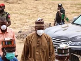 Two dead, others injured as Babagana Zulum survived a road accident