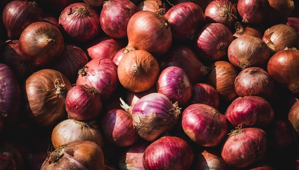 Onion farmers plead for increased investment