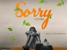 Redeema Omo Ologo – Sorry Cover