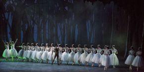 Teatro Regio Torino, 13 XII 2014 (Giselle, ballet Nacional de Cuba) 4